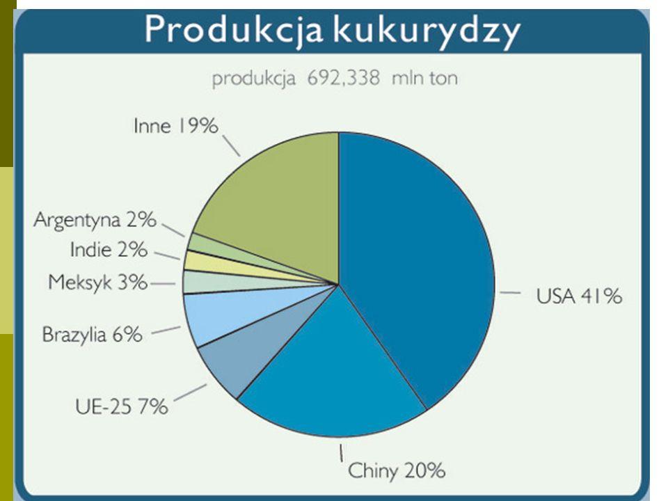 Kukurydza- plony Największe (q/ha) Włochy – 90 Francja - 85 USA – 83 Kanada – 71 Egipt i Hiszpania - 69 Najmniejsze (q/ha) Indie – 17 Indonezja – 26 Brazylia – 28 Meksyk – 23 RPA - 24