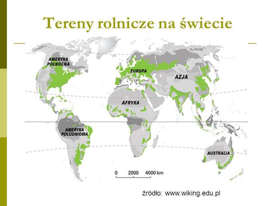 Tereny rolnicze na świecie źródło: www.wiking.edu.pl