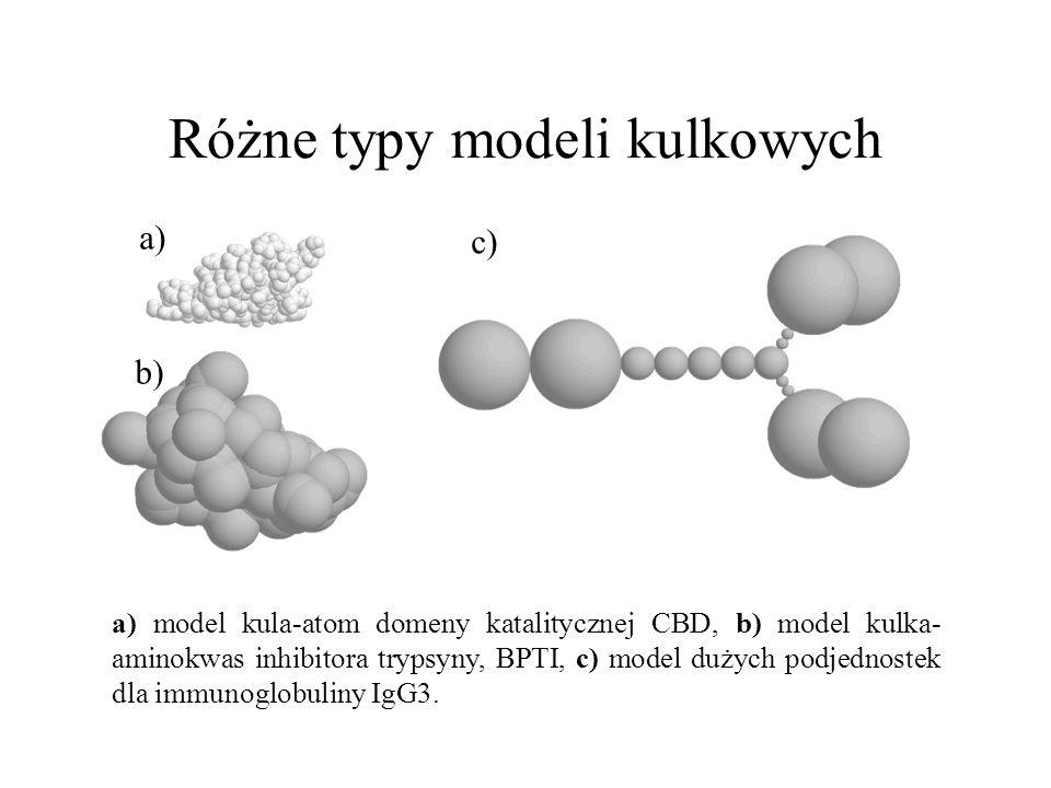 Różne typy modeli kulkowych a) b) c) a) model kula-atom domeny katalitycznej CBD, b) model kulka- aminokwas inhibitora trypsyny, BPTI, c) model dużych
