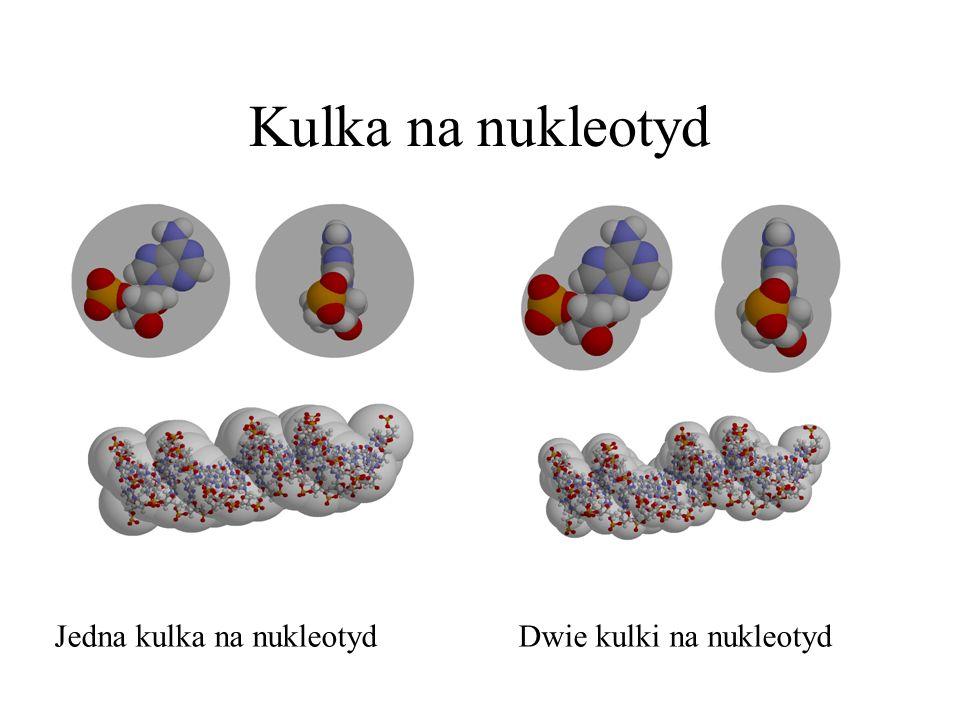 Kulka na nukleotyd Jedna kulka na nukleotydDwie kulki na nukleotyd