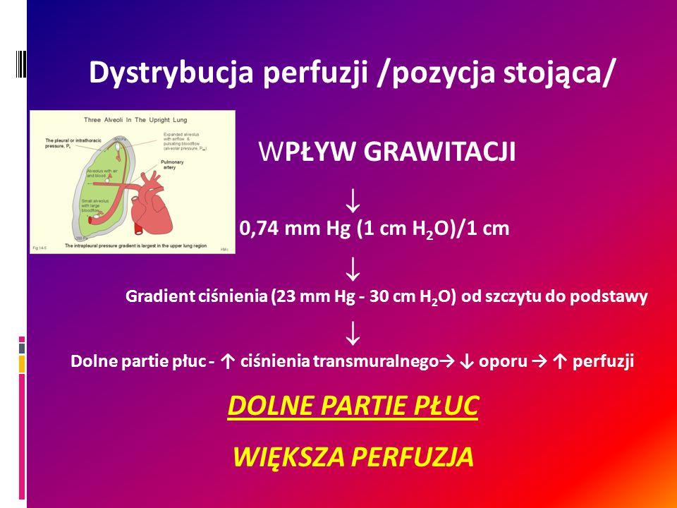 Dystrybucja perfuzji /pozycja stojąca/ WPŁYW GRAWITACJI 0,74 mm Hg (1 cm H 2 O)/1 cm Gradient ciśnienia (23 mm Hg - 30 cm H 2 O) od szczytu do podstaw