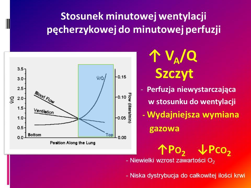 Stosunek minutowej wentylacji pęcherzykowej do minutowej perfuzji V A /Q Szczyt - Perfuzja niewystarczająca w stosunku do wentylacji - Wydajniejsza wy