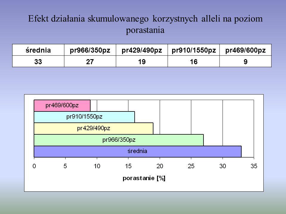 Efekt działania skumulowanego korzystnych alleli na poziom porastania średniapr966/350pzpr429/490pzpr910/1550pzpr469/600pz 332719169