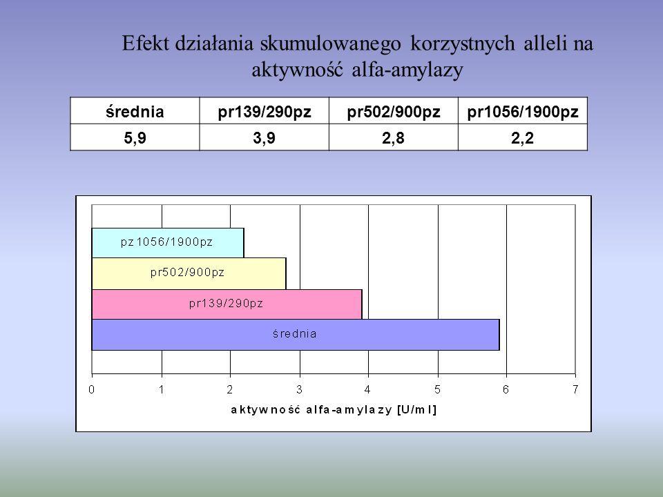 Efekt działania skumulowanego korzystnych alleli na aktywność alfa-amylazy średniapr139/290pzpr502/900pzpr1056/1900pz 5,93,92,82,2