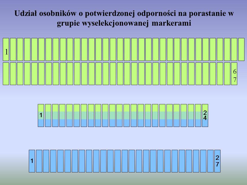 Udział osobników o potwierdzonej odporności na porastanie w grupie wyselekcjonowanej markerami 1 6 7 1 6767 1 2 7 1 2 4