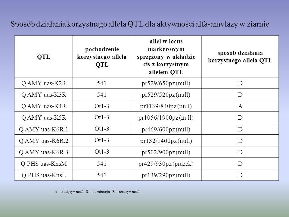 QTL pochodzenie korzystnego allela QTL allel w locus markerowym sprzężony w układzie cis z korzystnym allelem QTL sposób działania korzystnego allela