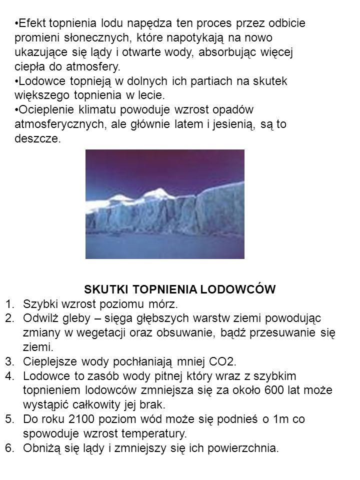 DOŚWIADCZENIE Jakie czynniki wpływają na tempo topnienia lodu.