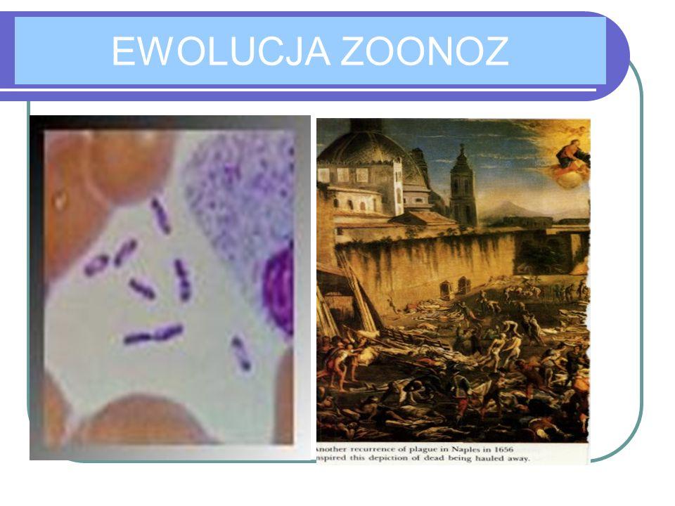 EWOLUCJA ZOONOZ