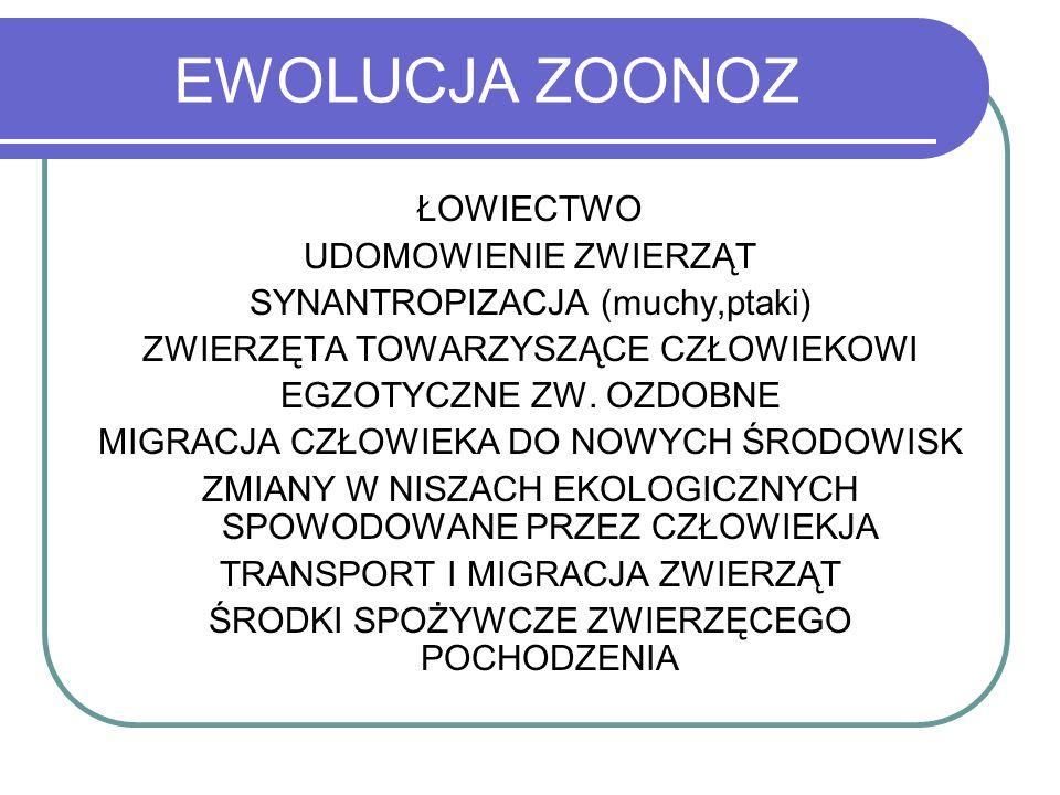 GRUŹLICA JAKO ZOONOZA II