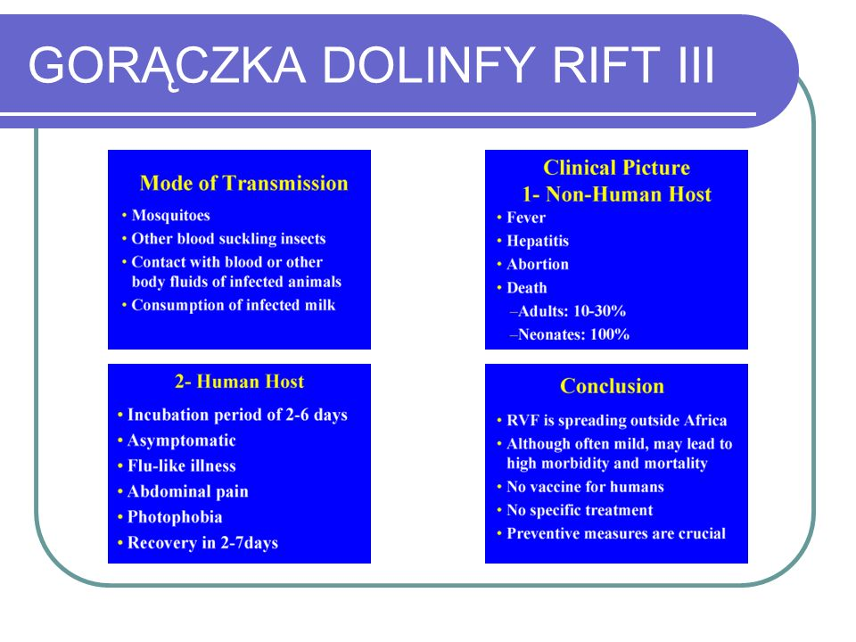 GORĄCZKA DOLINFY RIFT III