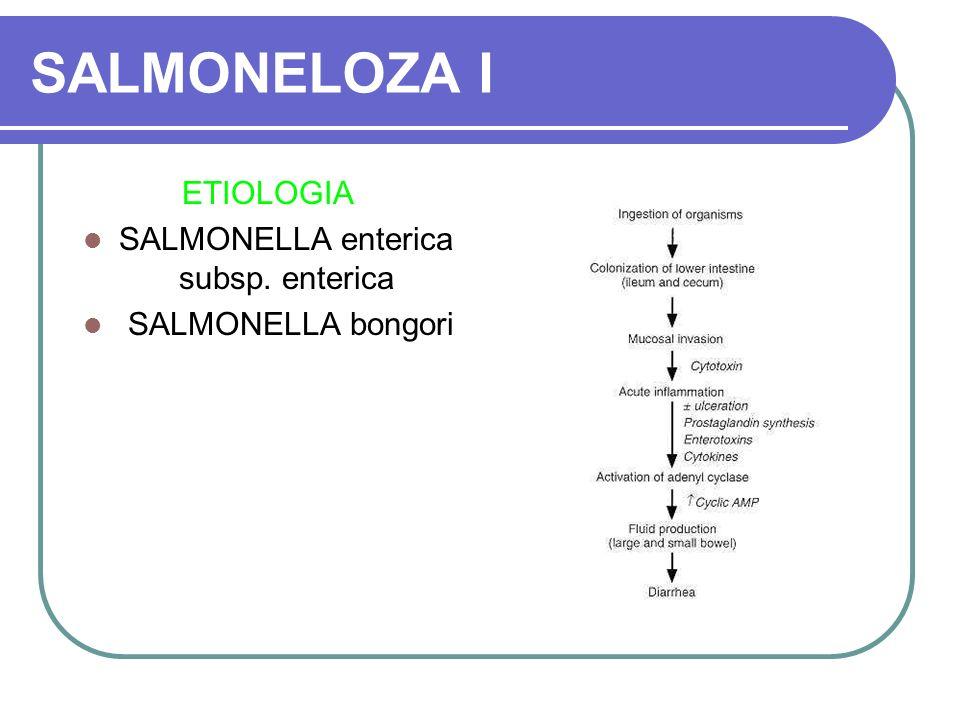 SALMONELOZA I ETIOLOGIA SALMONELLA enterica subsp. enterica SALMONELLA bongori