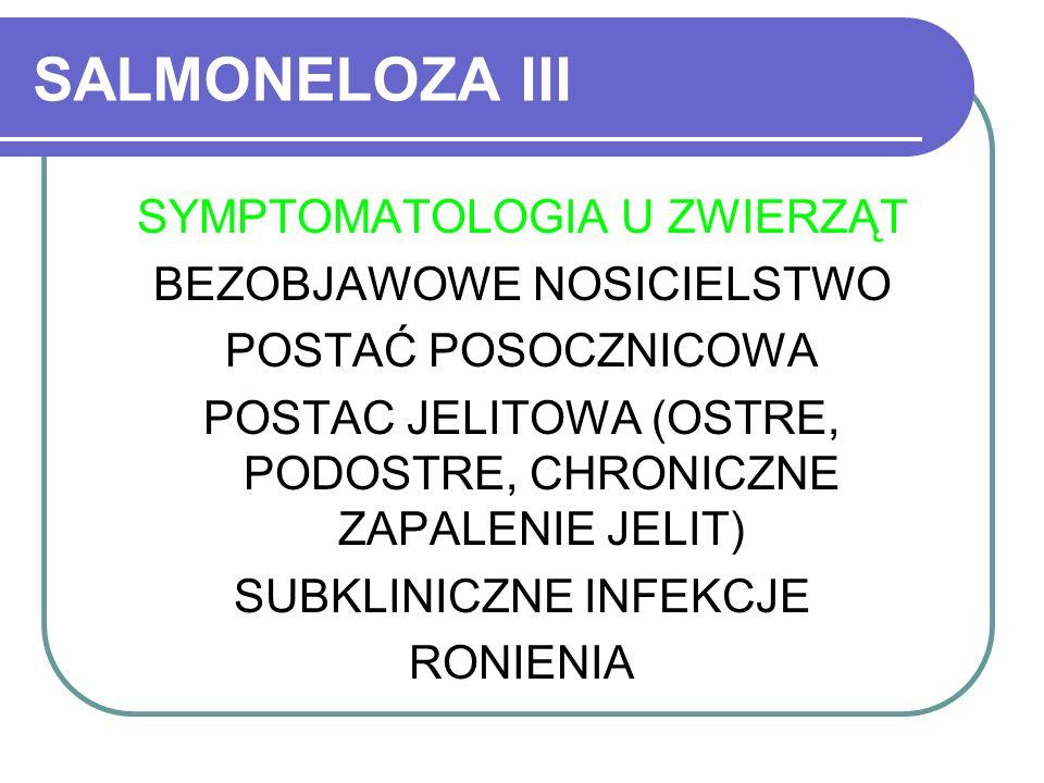 SALMONELOZA III SYMPTOMATOLOGIA U ZWIERZĄT BEZOBJAWOWE NOSICIELSTWO POSTAĆ POSOCZNICOWA POSTAC JELITOWA (OSTRE, PODOSTRE, CHRONICZNE ZAPALENIE JELIT)