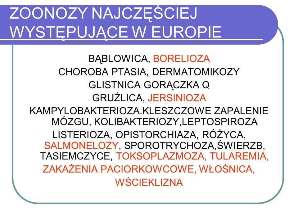 ZOONOZY NAJCZĘŚCIEJ WYSTĘPUJĄCE W EUROPIE BĄBLOWICA, BORELIOZA CHOROBA PTASIA, DERMATOMIKOZY GLISTNICA GORĄCZKA Q GRUŹLICA, JERSINIOZA KAMPYLOBAKTERIO