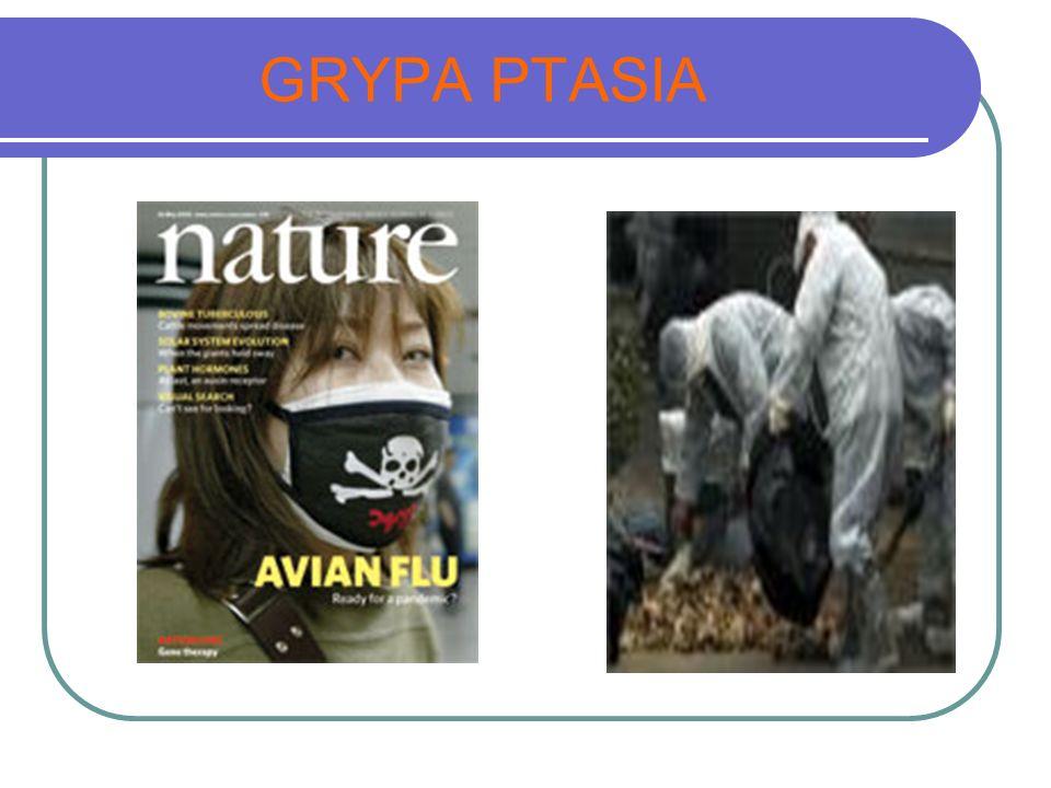 GRYPA PTASIA
