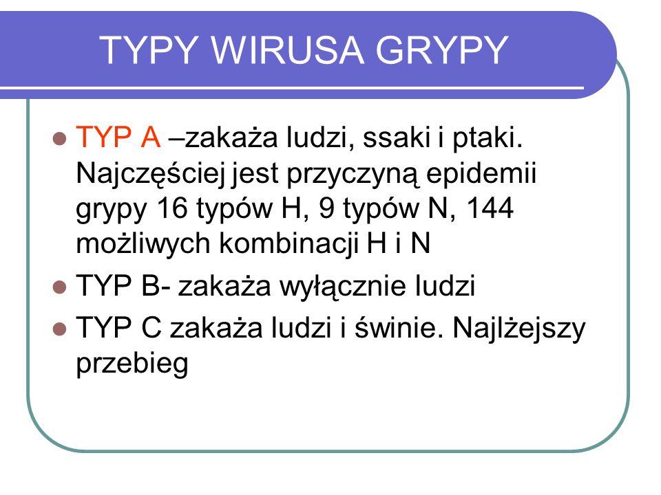 TYPY WIRUSA GRYPY TYP A –zakaża ludzi, ssaki i ptaki. Najczęściej jest przyczyną epidemii grypy 16 typów H, 9 typów N, 144 możliwych kombinacji H i N