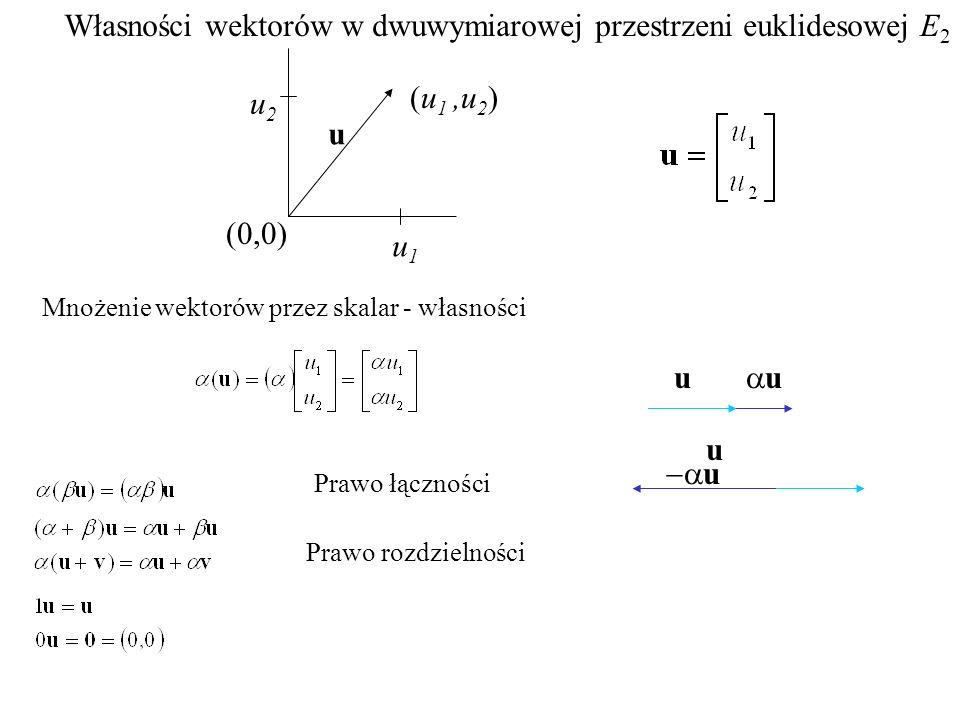 (0,0) u1u1 u2u2 (u 1,u 2 ) u Własności wektorów w dwuwymiarowej przestrzeni euklidesowej E 2 Prawo łączności Prawo rozdzielności Mnożenie wektorów prz