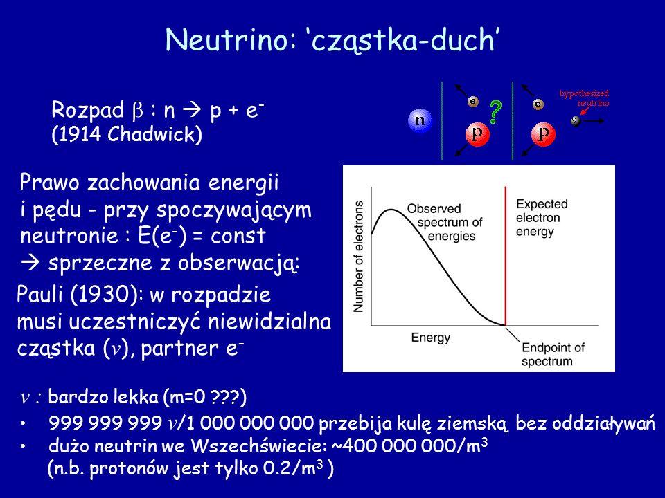 Neutrino: cząstka-duch Rozpad : n p + e - (1914 Chadwick) Prawo zachowania energii i pędu - przy spoczywającym neutronie : E(e - ) = const sprzeczne z