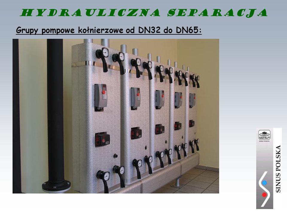Hydrauliczna separacja Grupy pompowe kołnierzowe od DN32 do DN65: