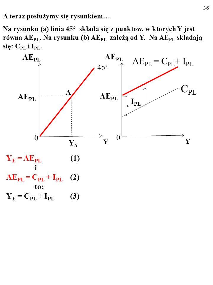 35 A AE PL Y 45° YAYA AE PL 0 Y I PL AE PL 0 AE PL = C PL + I PL C PL A teraz posłużymy się rysunkiem… Na rysunku (a) linia 45° składa się z punktów,