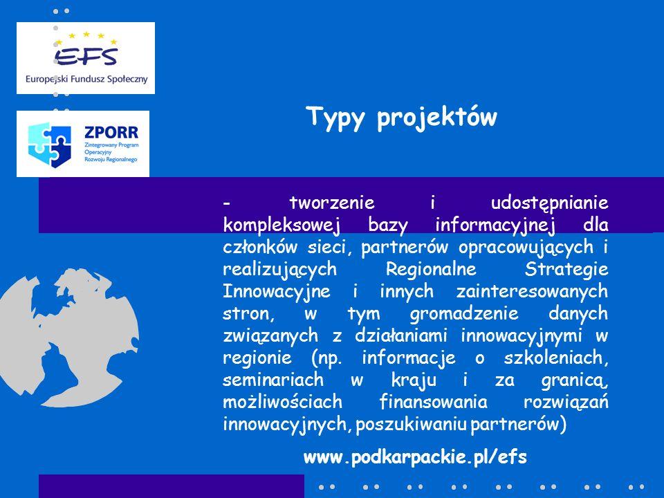 Typy projektów -tworzenie i udostępnianie kompleksowej bazy informacyjnej dla członków sieci, partnerów opracowujących i realizujących Regionalne Stra