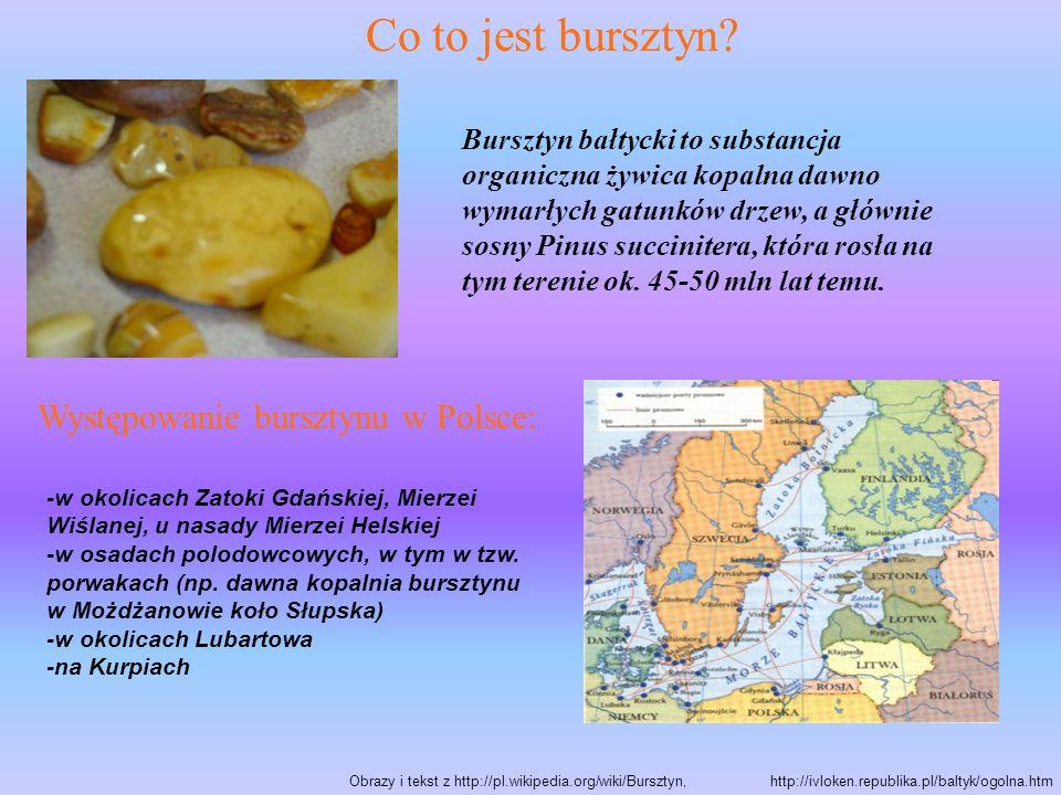 Co to jest bursztyn? Bursztyn bałtycki to substancja organiczna żywica kopalna dawno wymarłych gatunków drzew, a głównie sosny Pinus succinitera, któr