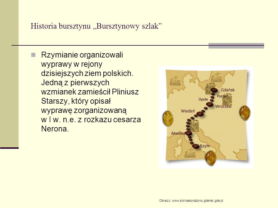 Historia bursztynu Bursztynowy szlak Rzymianie organizowali wyprawy w rejony dzisiejszych ziem polskich. Jedną z pierwszych wzmianek zamieścił Plinius