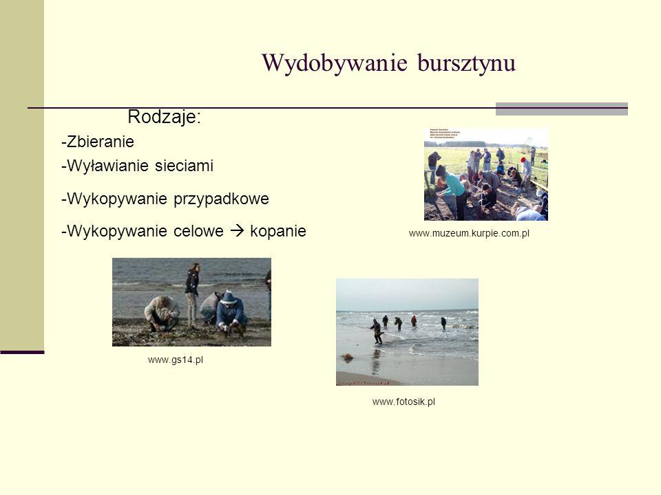 Wydobywanie bursztynu Rodzaje: -Zbieranie -Wyławianie sieciami -Wykopywanie przypadkowe -Wykopywanie celowe kopanie www.muzeum.kurpie.com.pl www.gs14.