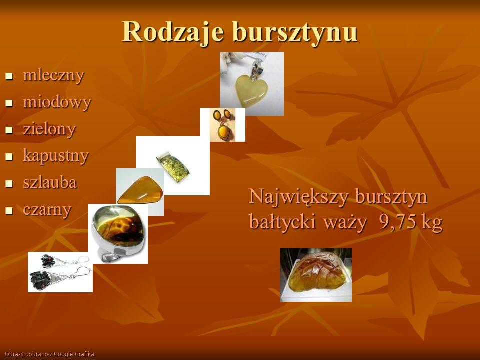 Bursztyn z inkluzją Inkluzja-zatopione w bursztynie muszelki, owady, części roślin.
