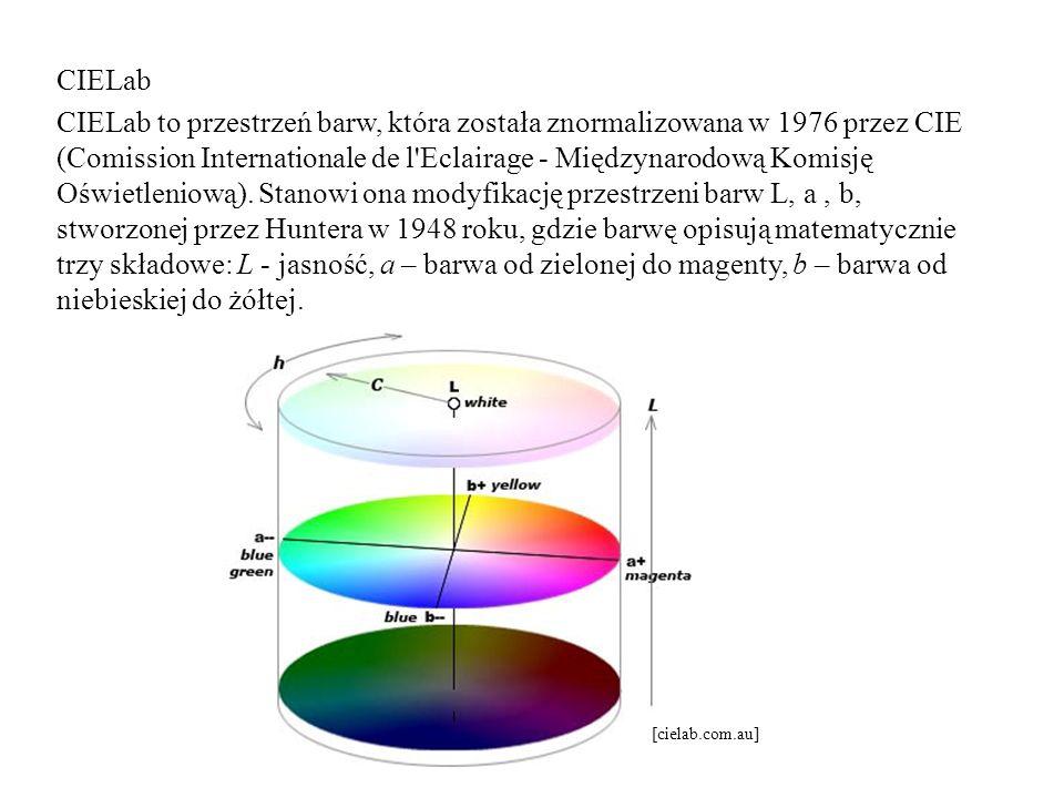 CIELab CIELab to przestrzeń barw, która została znormalizowana w 1976 przez CIE (Comission Internationale de l'Eclairage - Międzynarodową Komisję Oświ