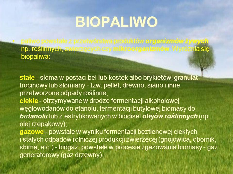 BIOPALIWO paliwo powstałe z przetwórstwa produktów organizmów żywych np. roślinnych, zwierzęcych czy mikroorganizmów. Wyróżnia się biopaliwa: stałe -