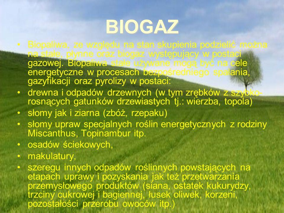 BIOGAZ Biopaliwa, ze względu na stan skupienia podzielić można na stałe, płynne oraz biogaz występujący w postaci gazowej. Biopaliwa stałe używane mog