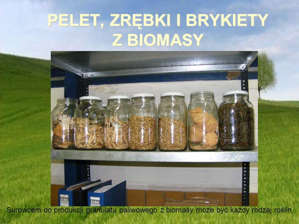 PELET, ZRĘBKI I BRYKIETY Z BIOMASY Surowcem do produkcji granulatu paliwowego z biomasy może być każdy rodzaj roślin.