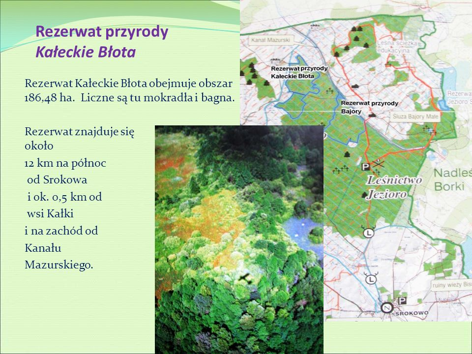 Rezerwat przyrody Kałeckie Błota Rezerwat Kałeckie Błota obejmuje obszar 186,48 ha. Liczne są tu mokradła i bagna. Rezerwat znajduje się około 12 km n