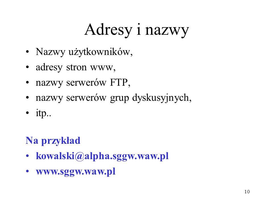 Aktywności internetowe Poczta elektroniczna (e-mail), Transfer plików (FTP), Grupy dyskusyjne (na serwerach), Prezentacje i informacje (World Wide Web