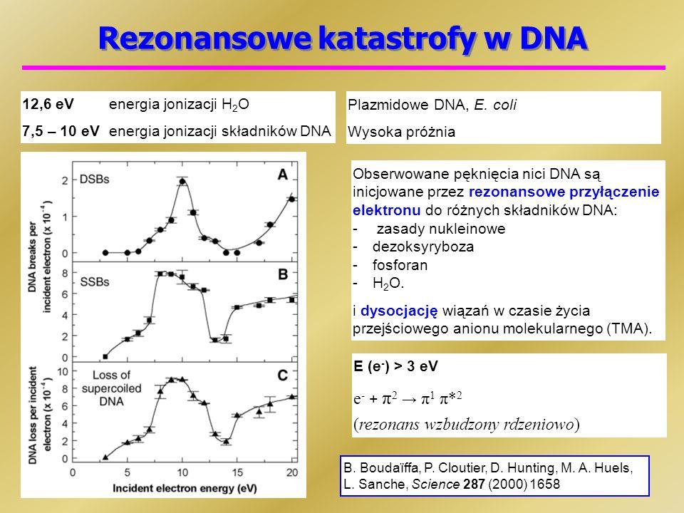 Rezonansowe katastrofy w DNA 12,6 eVenergia jonizacji H 2 O 7,5 – 10 eVenergia jonizacji składników DNA B.