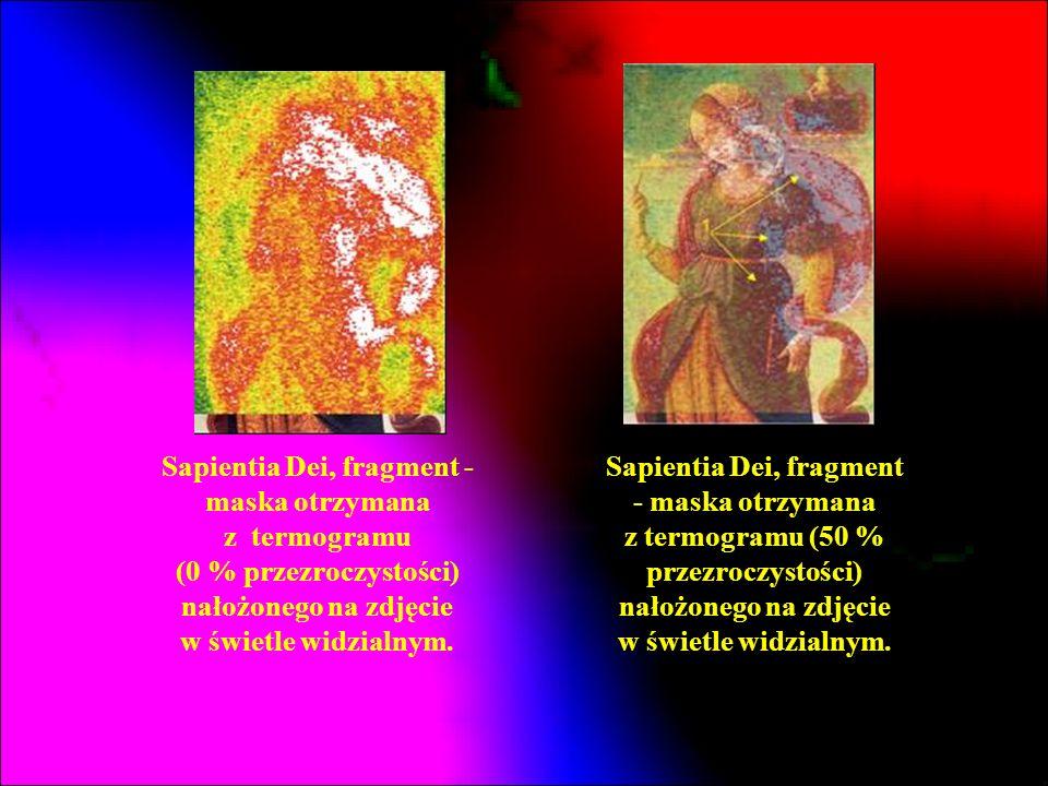 Sapientia Dei, fragment - maska otrzymana z termogramu (0 % przezroczystości) nałożonego na zdjęcie w świetle widzialnym. Sapientia Dei, fragment - ma