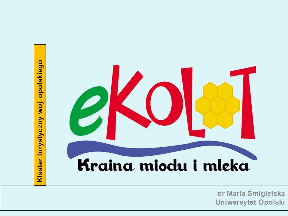 Portal www.e-kolot.pl Efekty projektu IE