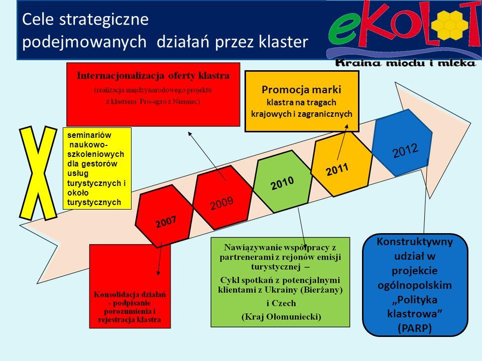 Cele szczegółowe klastra: Konsolidacja działań wewnętrznych podmiotów/aktorów klastra do tworzenia pełnego łańcucha wartości oferowanych usług/produktów