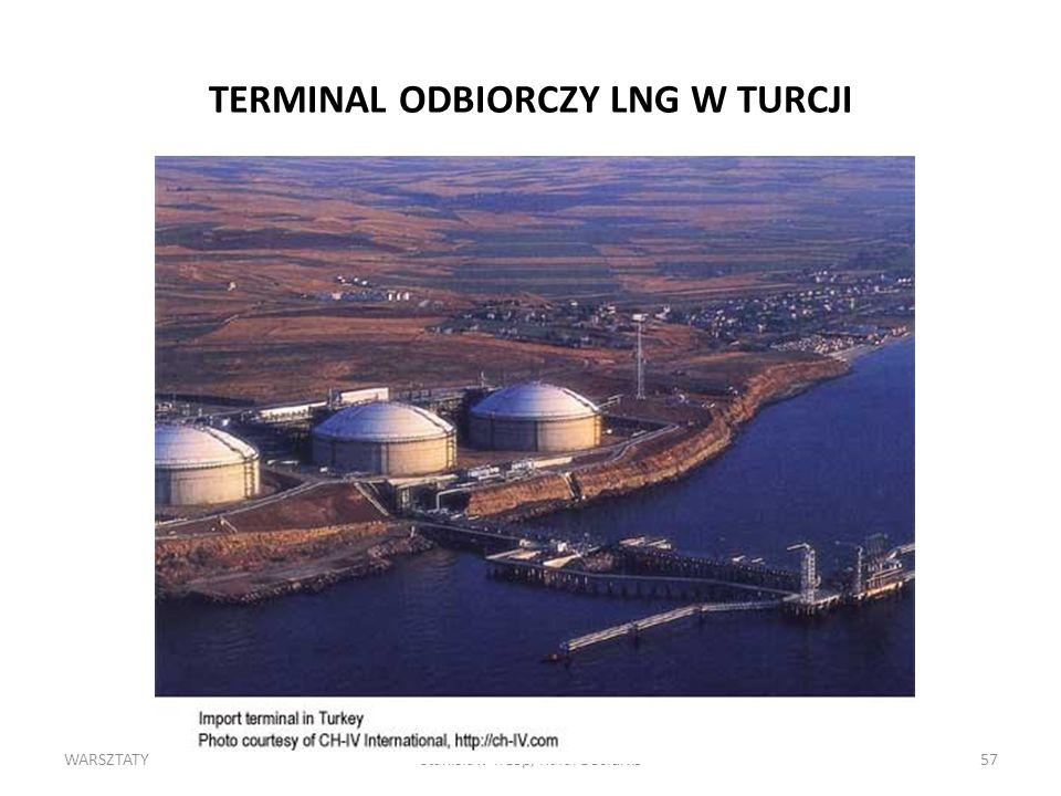 WARSZTATYStanisław Trzop, Rafał Bociurko57 TERMINAL ODBIORCZY LNG W TURCJI