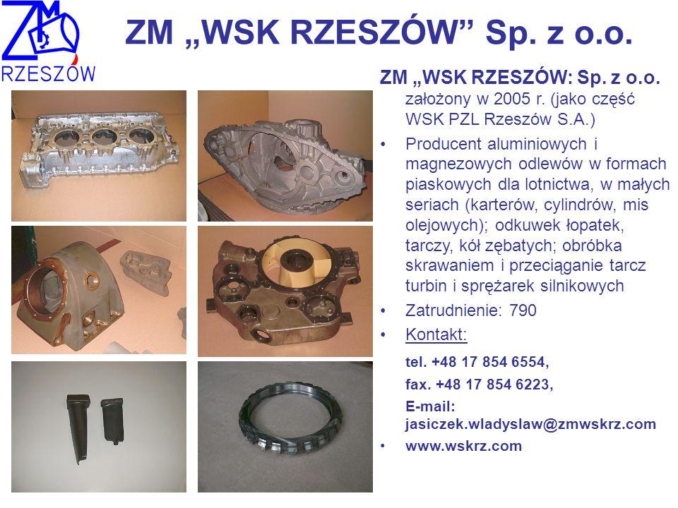 ZM WSK RZESZÓW Sp. z o.o. ZM WSK RZESZÓW: Sp. z o.o. założony w 2005 r. (jako część WSK PZL Rzeszów S.A.) Producent aluminiowych i magnezowych odlewów