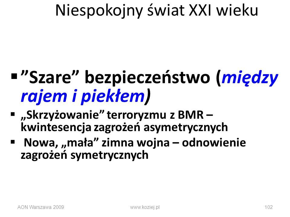 AON Warszawa 2009www.koziej.pl102 Niespokojny świat XXI wieku Szare bezpieczeństwo (między rajem i piekłem) Skrzyżowanie terroryzmu z BMR – kwintesenc