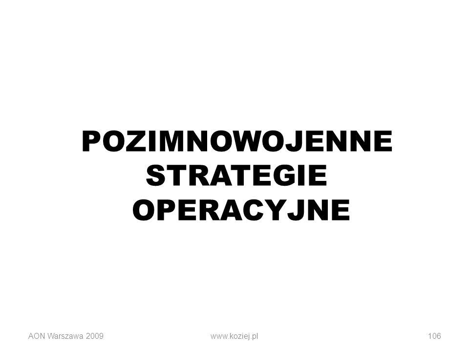 POZIMNOWOJENNE STRATEGIE OPERACYJNE AON Warszawa 2009www.koziej.pl106