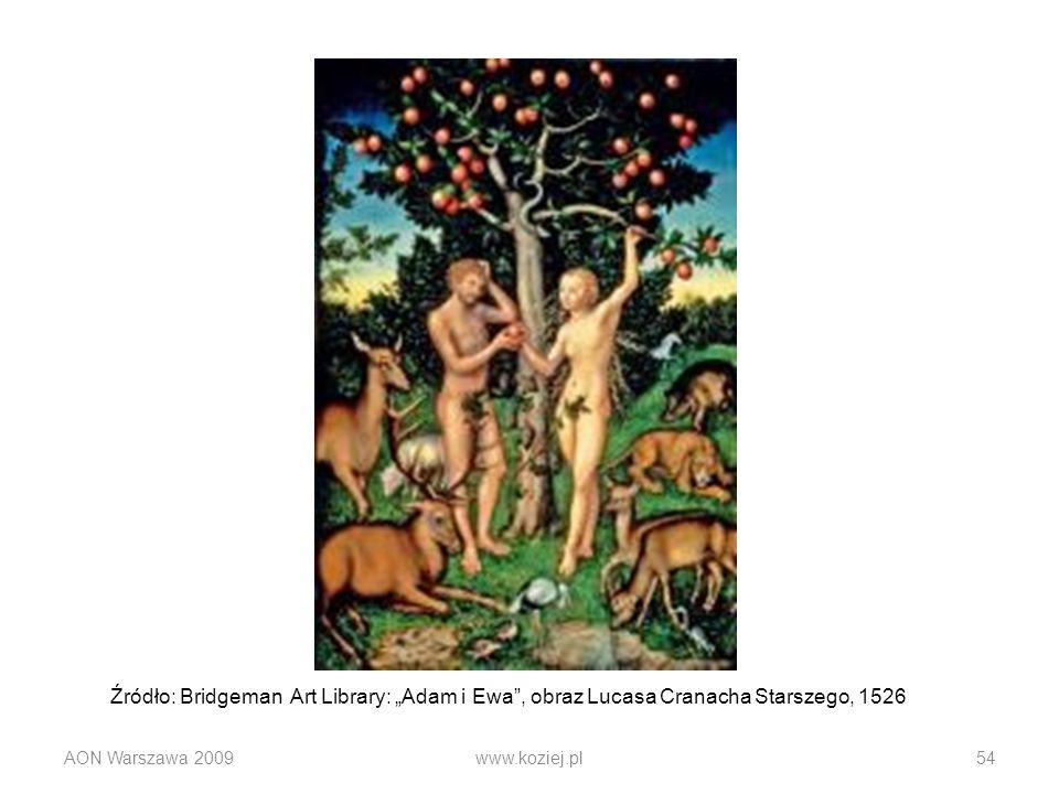 AON Warszawa 2009www.koziej.pl54 Źródło: Bridgeman Art Library: Adam i Ewa, obraz Lucasa Cranacha Starszego, 1526