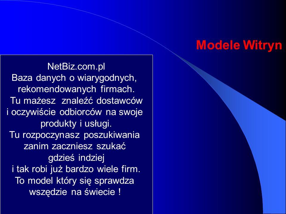 Cele współpracy Przygotować Niezależne Przedsiębiorstwa do zaistnienia w Internecie. Stworzenie sieci dystrybucji z myślą o firmie internetowej, które