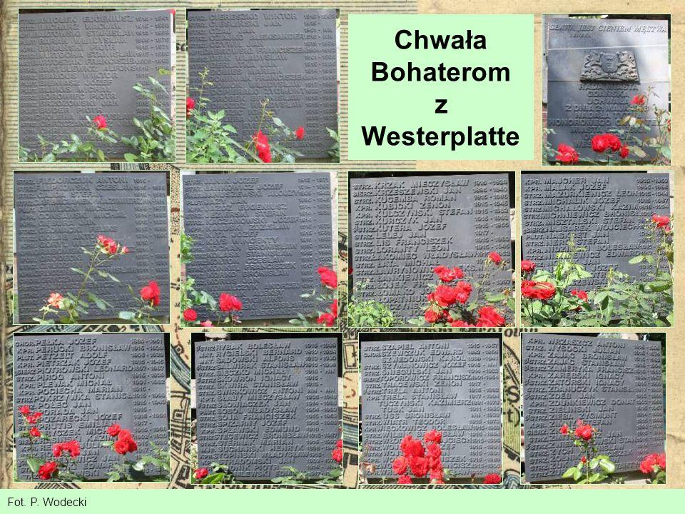 Chwała Bohaterom z Westerplatte Fot. P. Wodecki