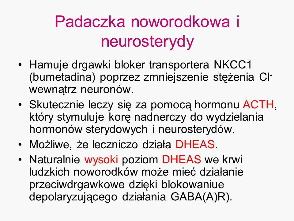 Padaczka noworodkowa i neurosterydy Hamuje drgawki bloker transportera NKCC1 (bumetadina) poprzez zmniejszenie stężenia Cl - wewnątrz neuronów. Skutec