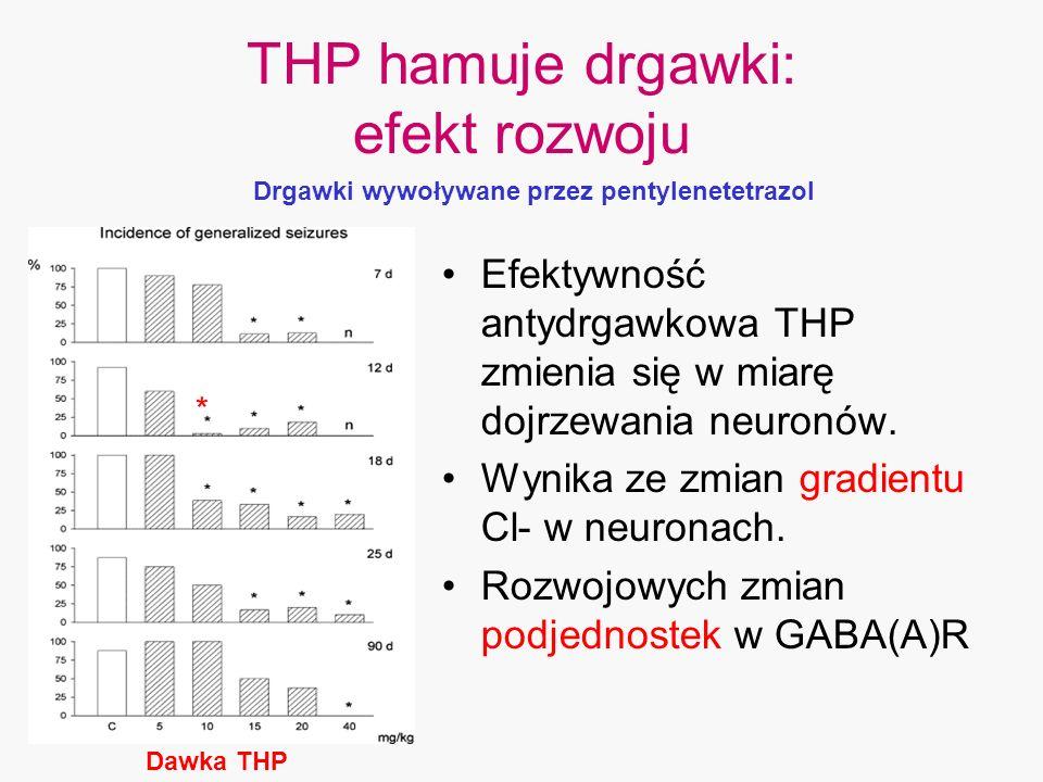 Dawka THP THP hamuje drgawki: efekt rozwoju Efektywność antydrgawkowa THP zmienia się w miarę dojrzewania neuronów. Wynika ze zmian gradientu Cl- w ne