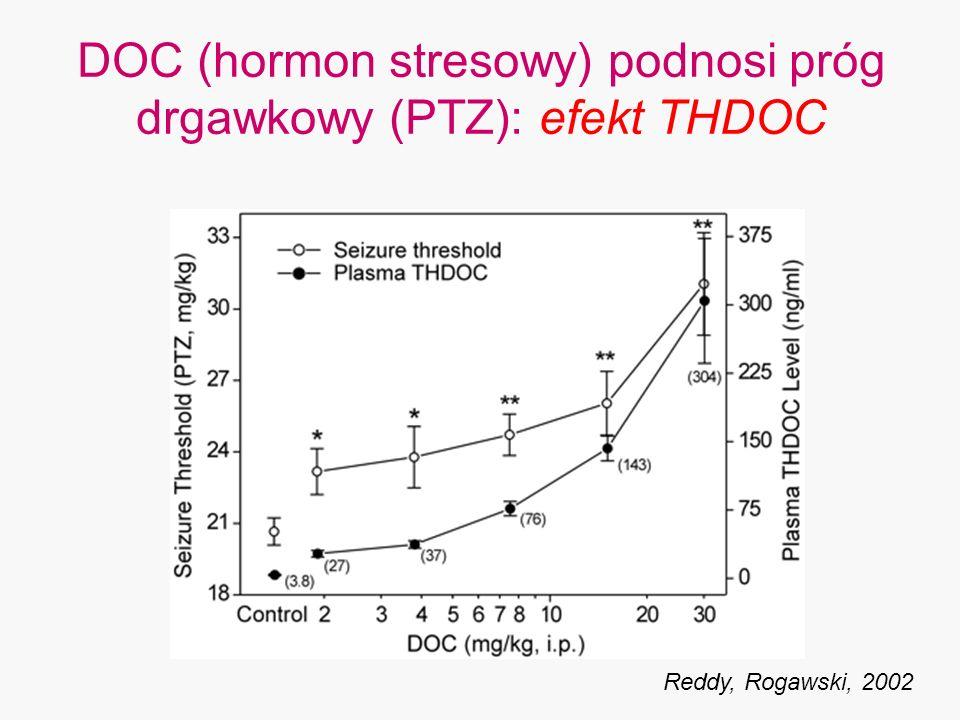 DOC (hormon stresowy) podnosi próg drgawkowy (PTZ): efekt THDOC Reddy, Rogawski, 2002