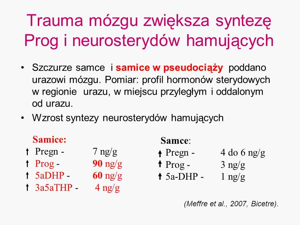 Trauma mózgu zwiększa syntezę Prog i neurosterydów hamujących Szczurze samce i samice w pseudociąży poddano urazowi mózgu. Pomiar: profil hormonów ste