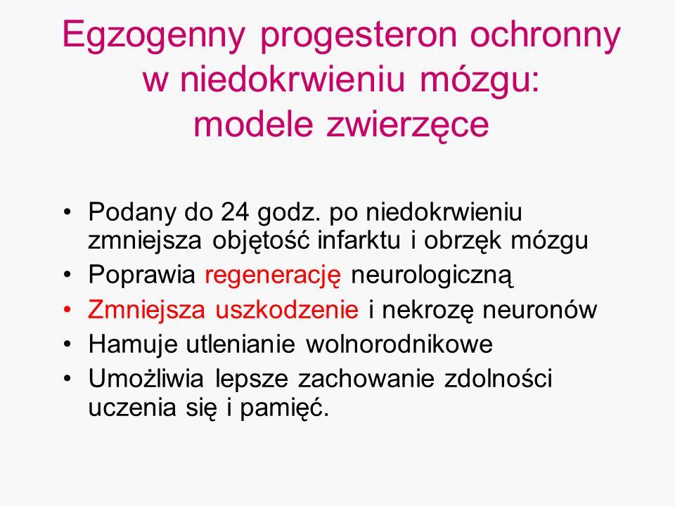 Egzogenny progesteron ochronny w niedokrwieniu mózgu: modele zwierzęce Podany do 24 godz. po niedokrwieniu zmniejsza objętość infarktu i obrzęk mózgu